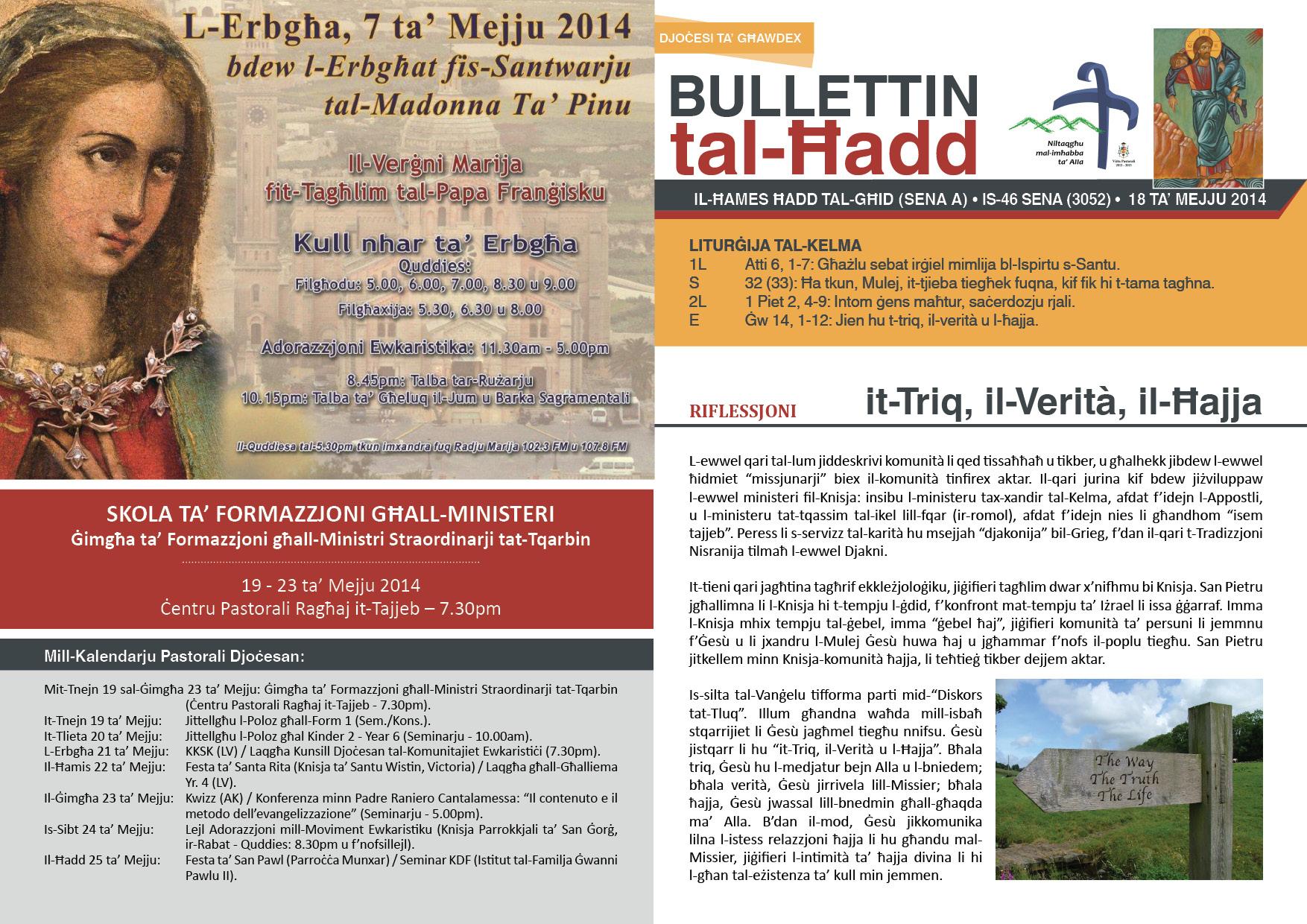 bullettin-2014-mejju-18.jpg